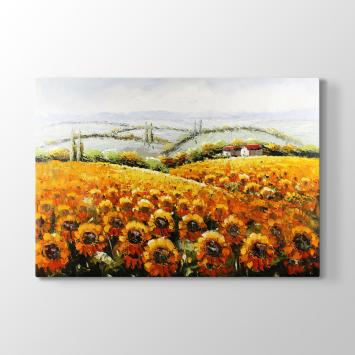 Ay Çiçeği - Günebakan Tablosu