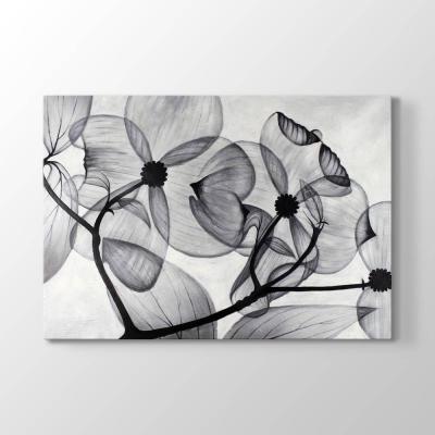 Şeffaf Çiçek Tablosu