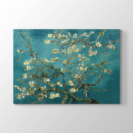 Vincent van Gogh - Almond Blossoms Tablosu