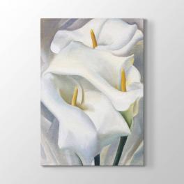 Georgia O Keeffe - Beyaz Çiçek Tablosu