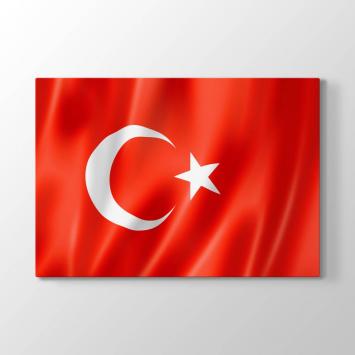 Dalgalanan Türk Bayrağı Tablosu