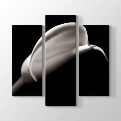 Monokrom Stil Çiçek Tablosu