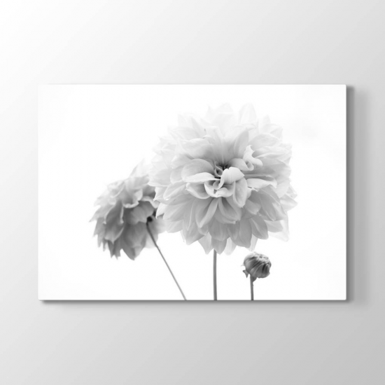 Beyaz Çiçekler Tablosu